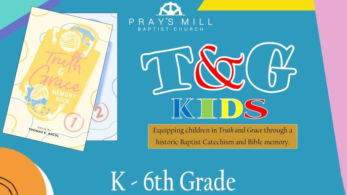 T&G Kids Slide (Blog)